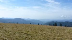 Aussicht Feldberg