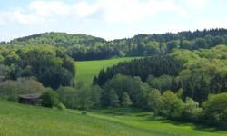 Eifeler Kräuterpfad