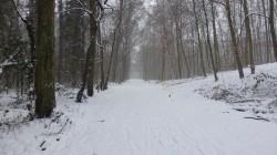 Römerkanal-Wanderweg Etappe 7